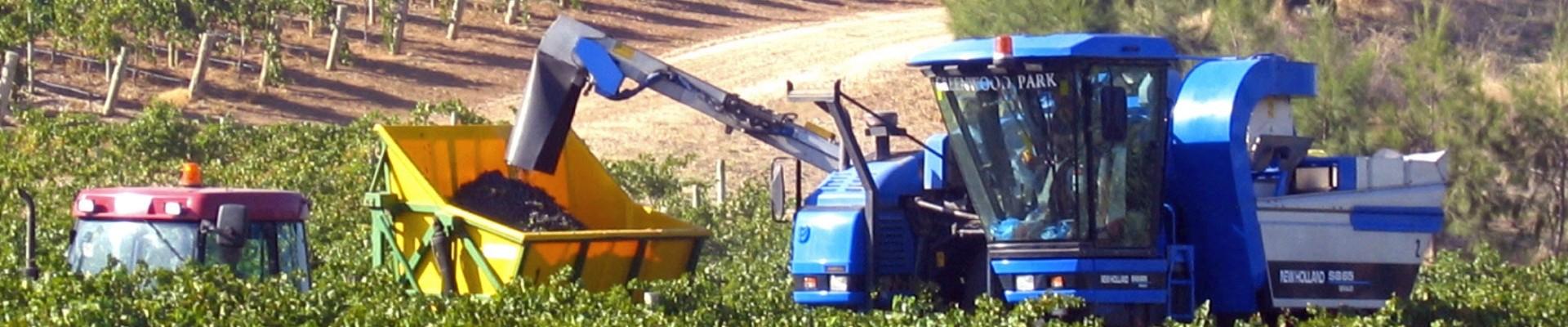 Machine Harvesting - Ackland Harvesting
